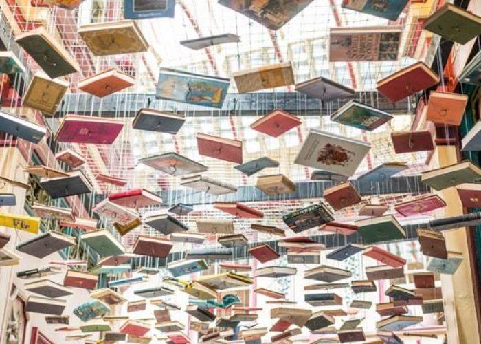 Ernest Mag Liste Les Livres Les Plus Attendus De La Rentree Littera 3465