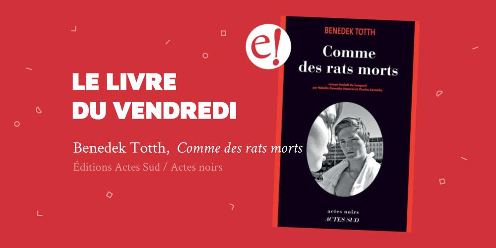 Ernest Mag Comme Des Rats