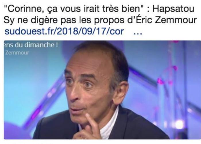 Ernest Zemmour Ineptie